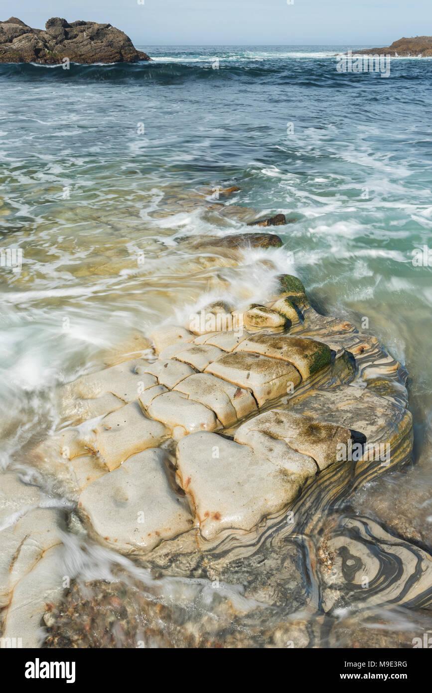 Waves crashing over shoreline (Carmelo formation), Weston Beach, Point Lobos State Natural Reserve, CA, USA, by Dominique Braud/Dembinsky Photo Assoc - Stock Image