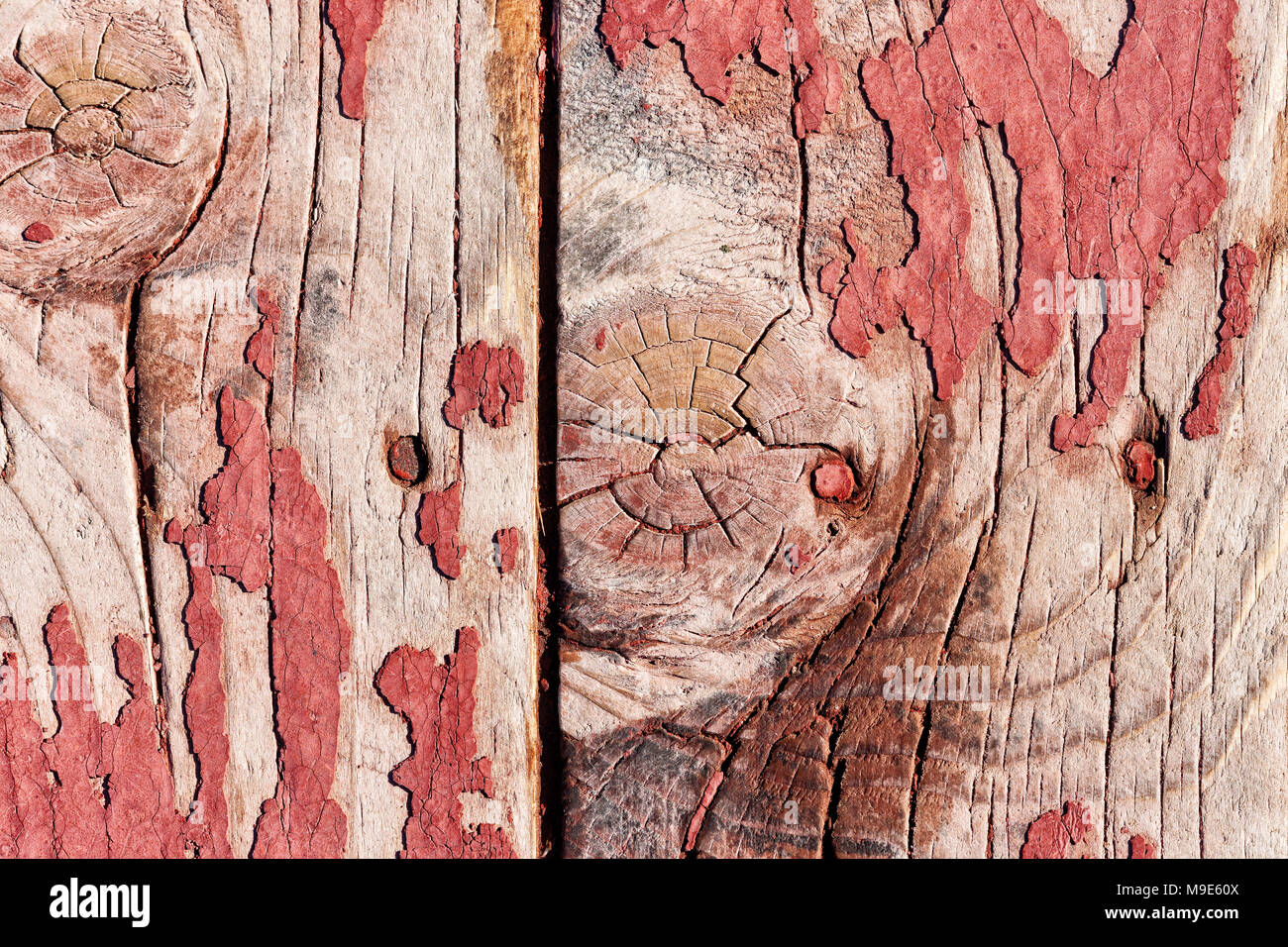 Grunge weathered wooden planks texture with a remnants of red paint, knots, snags and nail heads. Rich structure - Stock Image