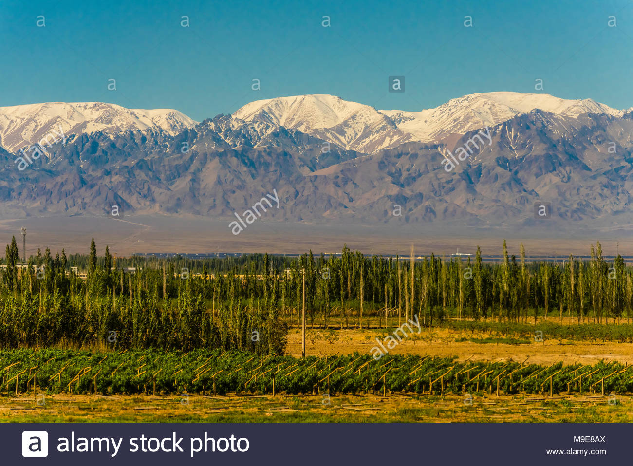 Snow capped mountains seen from train between Dunhuang in Gansu Province and Turpan in Xinjiang Province. To the north (behind the mountains) lies the - Stock Image