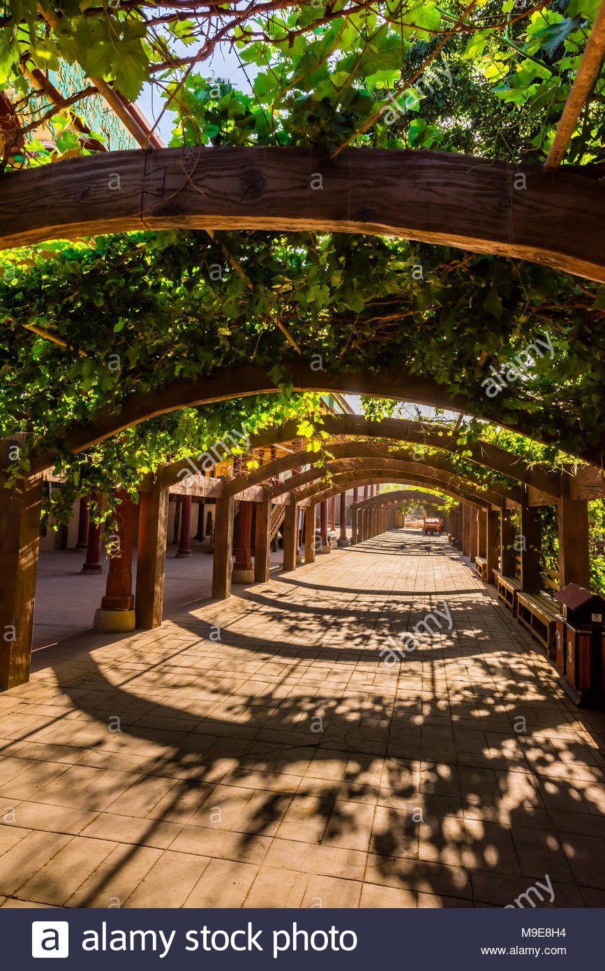 Grape Arbor Stock Photos & Grape Arbor Stock Images - Alamy
