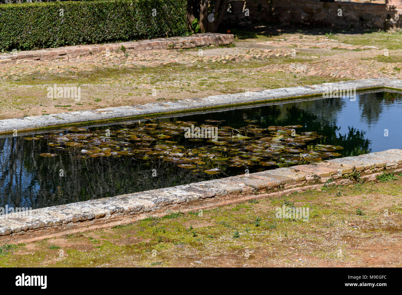 Small water pool in La Alhambra (Granada, Spain) - Stock Image