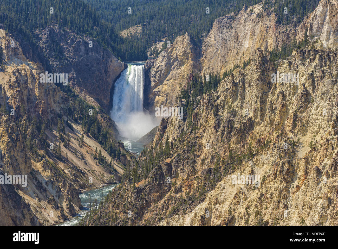 Lower Yellowstone Falls in the Grand Canyon of the Yellowstone from Artist Point Yellowstone National Park Wyoming USA - Stock Image