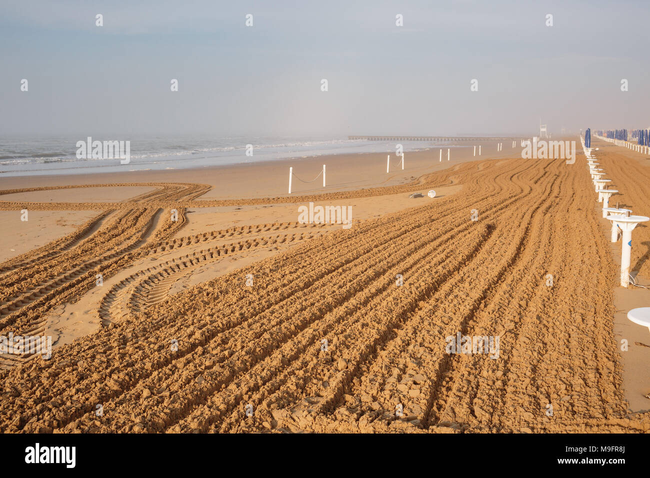 on the sandy beach cleaning, after winter, preparation for the holiday season in Italy. Wooden trunks in on the seashore after a sea storm. dense sea breeze at dawn - Stock Image