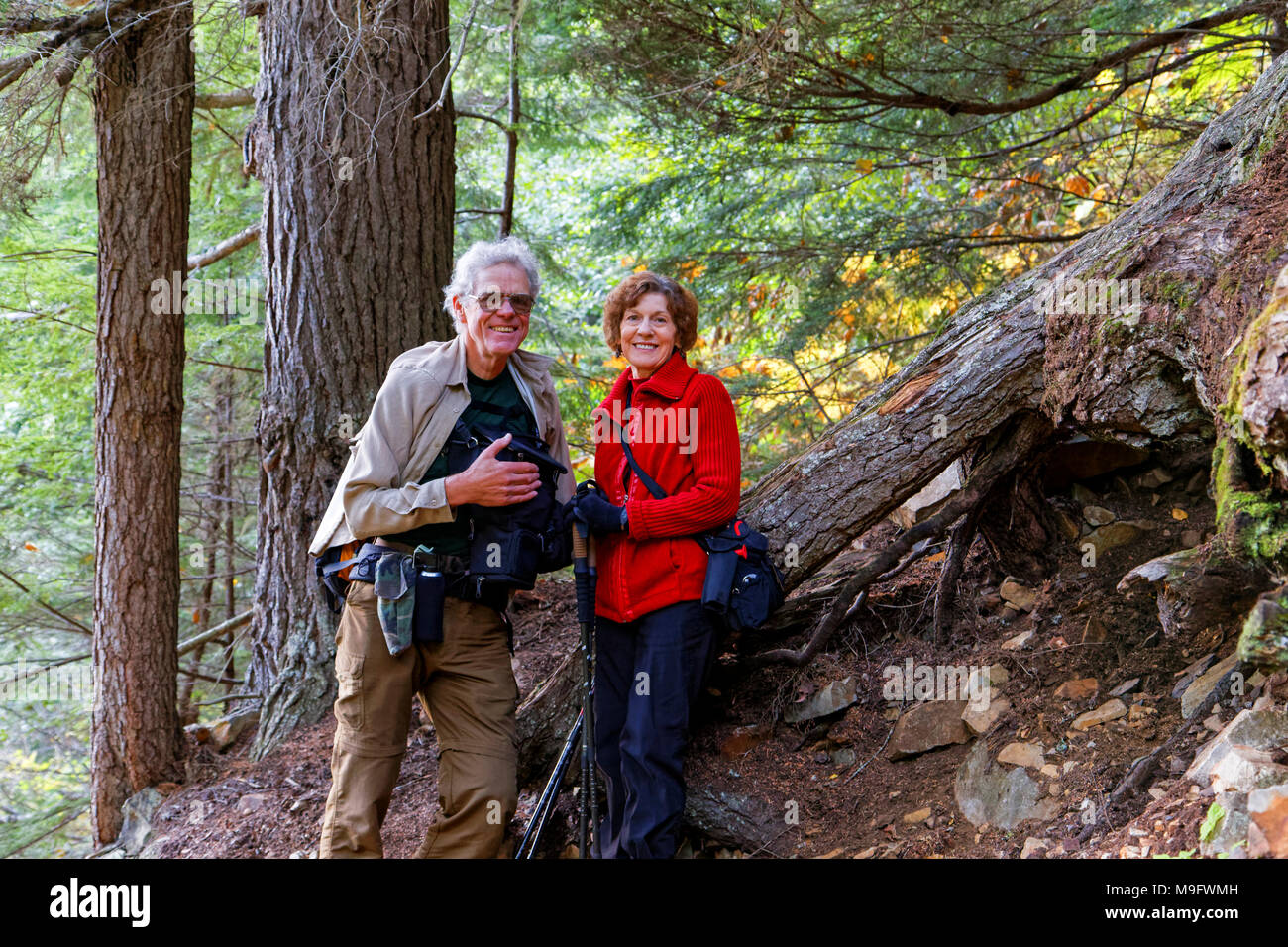42,636.05955 Elderly married couple resting on a hike up Glacier Gulch Trail in an old growth conifer forest, near Smithers, British Columbia, Canada - Stock Image