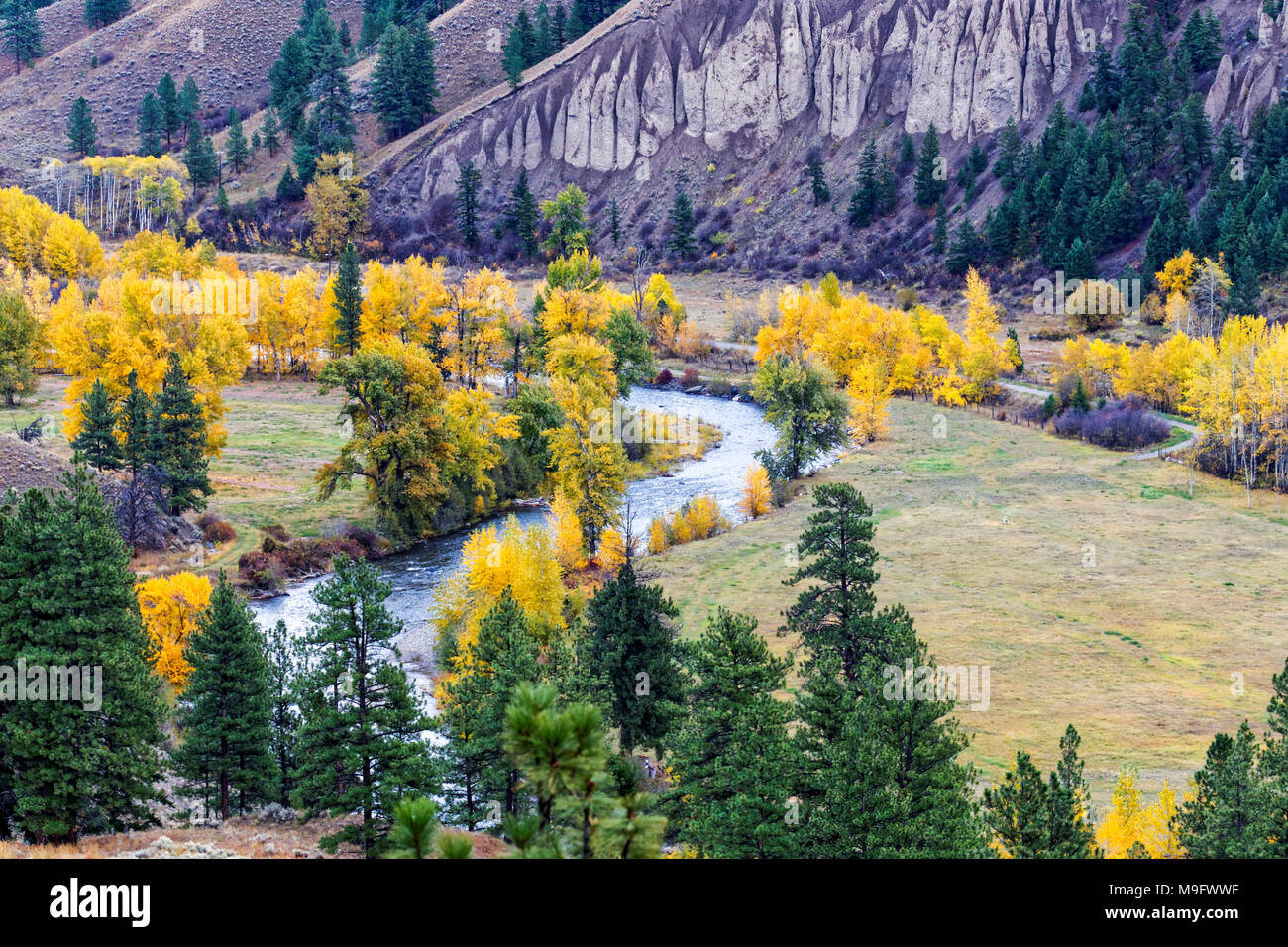 42,653.07348 landscape with twisting creek colorful valley meadow, yellow fall leaves on deciduous trees; conifers, cliff - Stock Image