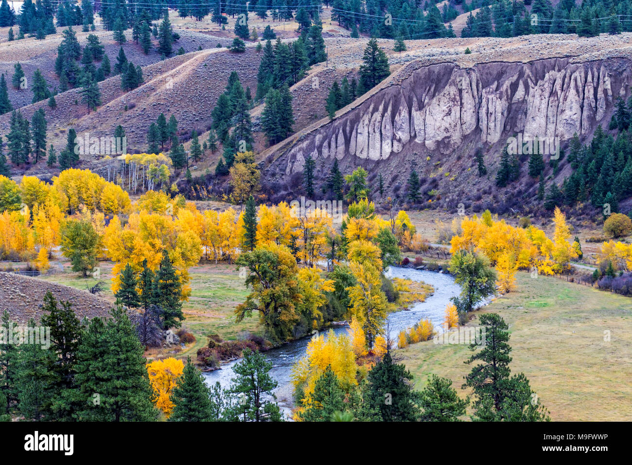 42,653.07349 landscape with twisting creek colorful valley meadow, yellow fall leaves on deciduous trees; conifers, cliff - Stock Image