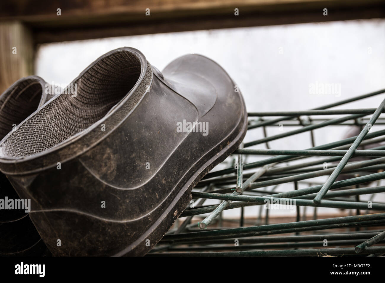 Close up of rubber boots of a farmer lying in greenhouse. Hard work and Agriculture concept. - Stock Image