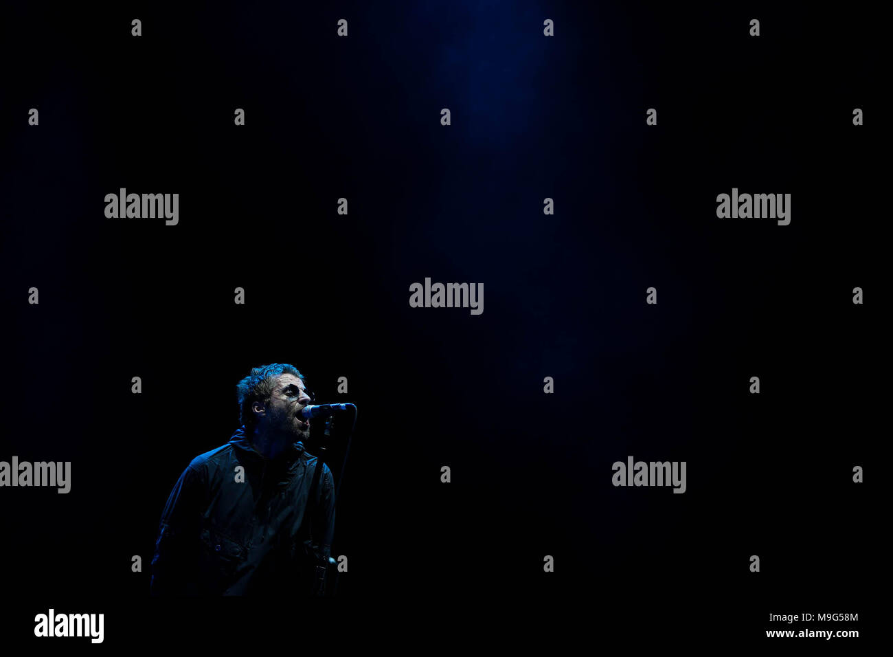 Sao Paulo, Brazil. 25th Mar, 2018. British singer Liam Gallagher performs during the Lollapalooza music festival in Sao Paulo, Brazil, 25 March 2018. Credit: Fernando Bizerra Jr./EFE/Alamy Live News - Stock Image