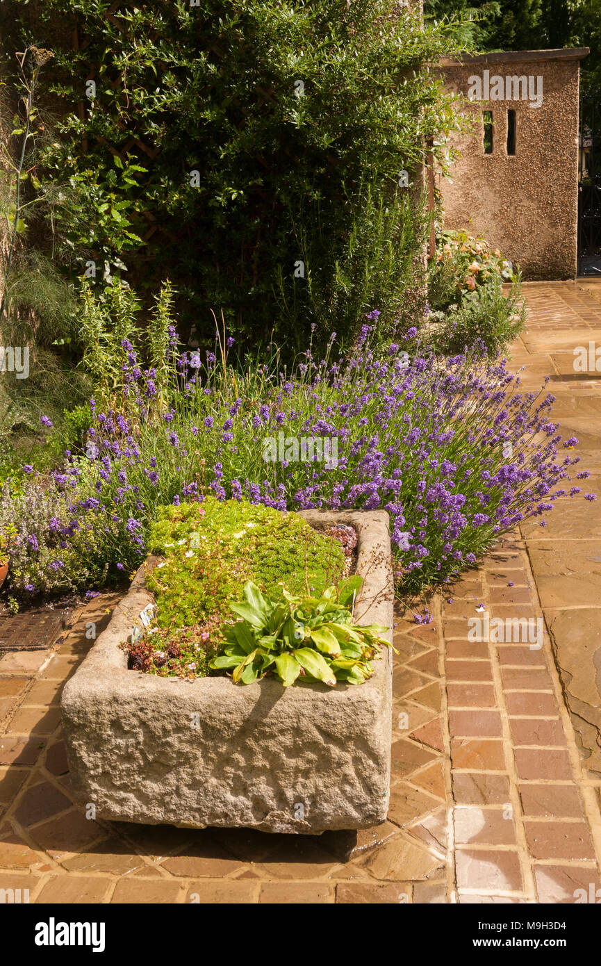 Close Up View Of Low Stone Planter On Sunny Stone Paved Patio