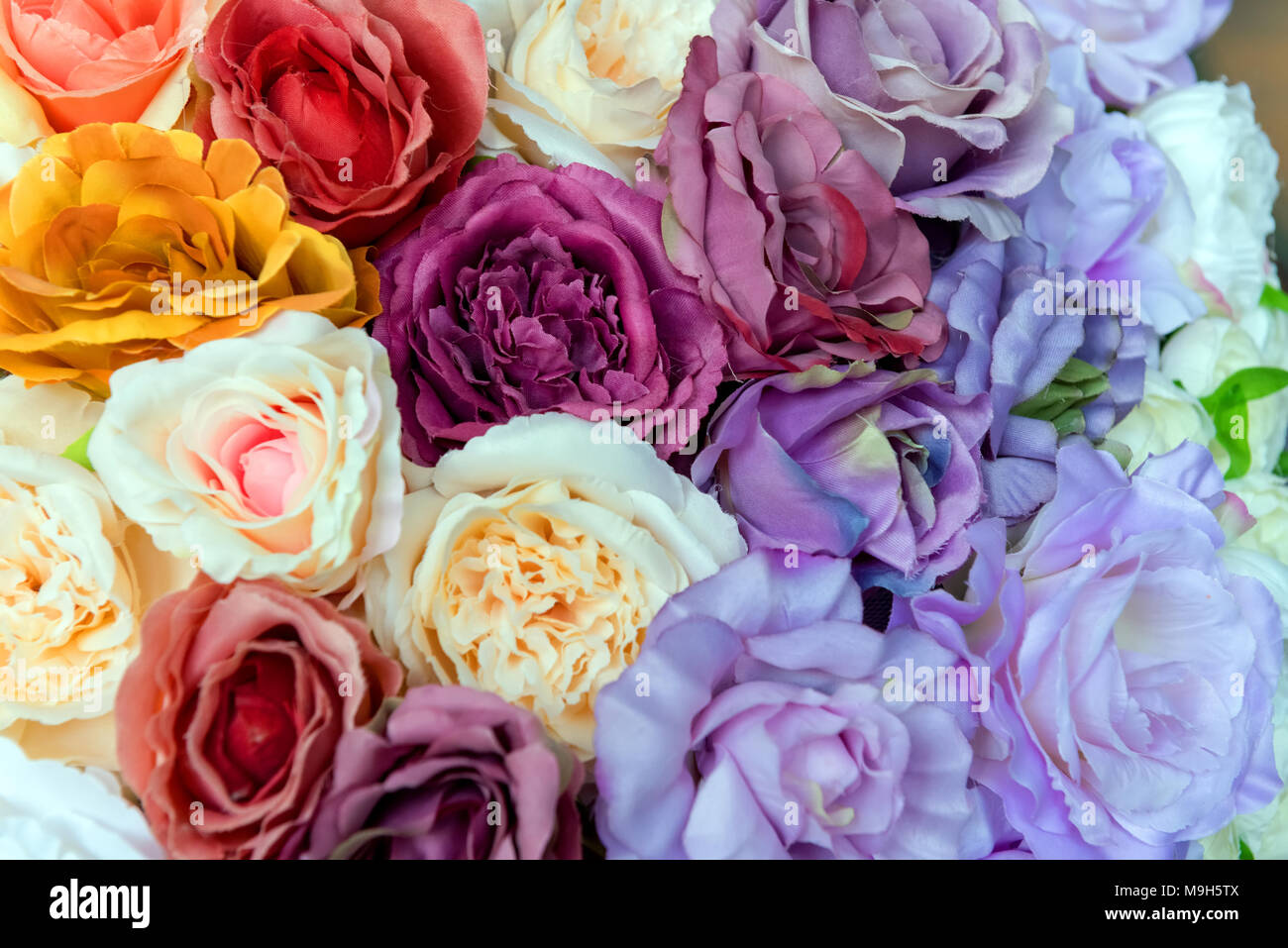 Colorful design pattern of flower texture and background - Stock Image