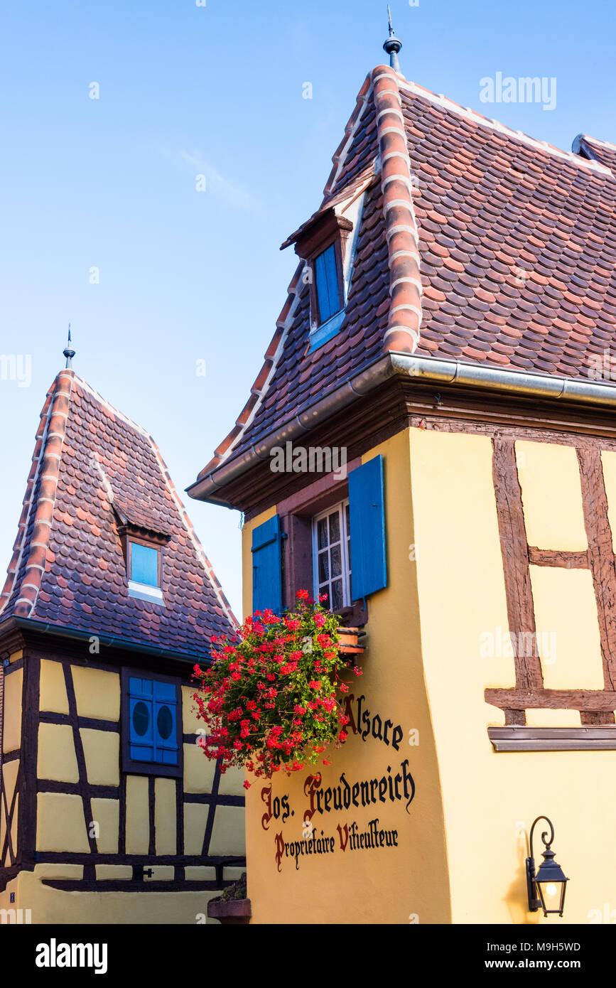 Half-timbered houses of the medieval village Eguisheim, member of the 'The most beautiful villages of France', Alsatian Wine Route, France - Stock Image