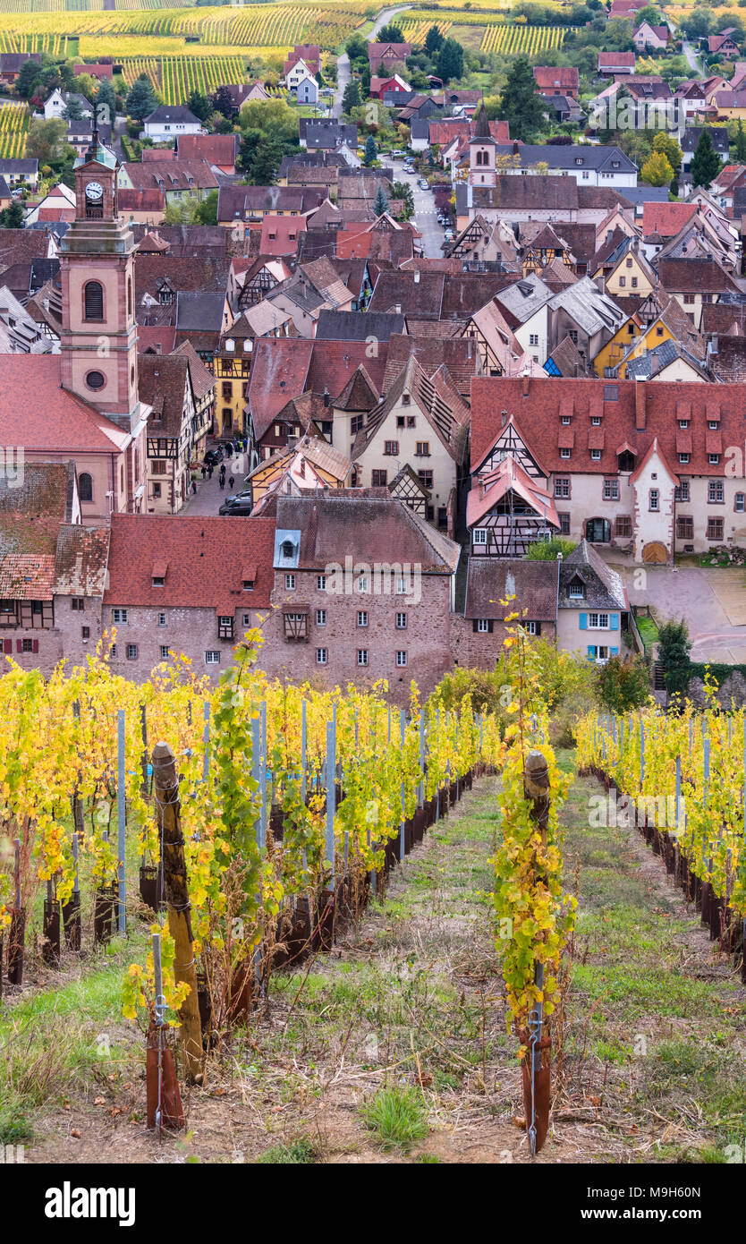 A view towards vineyards and the medieval town of Riquewihr, Alsatian Wine Route, France - Stock Image
