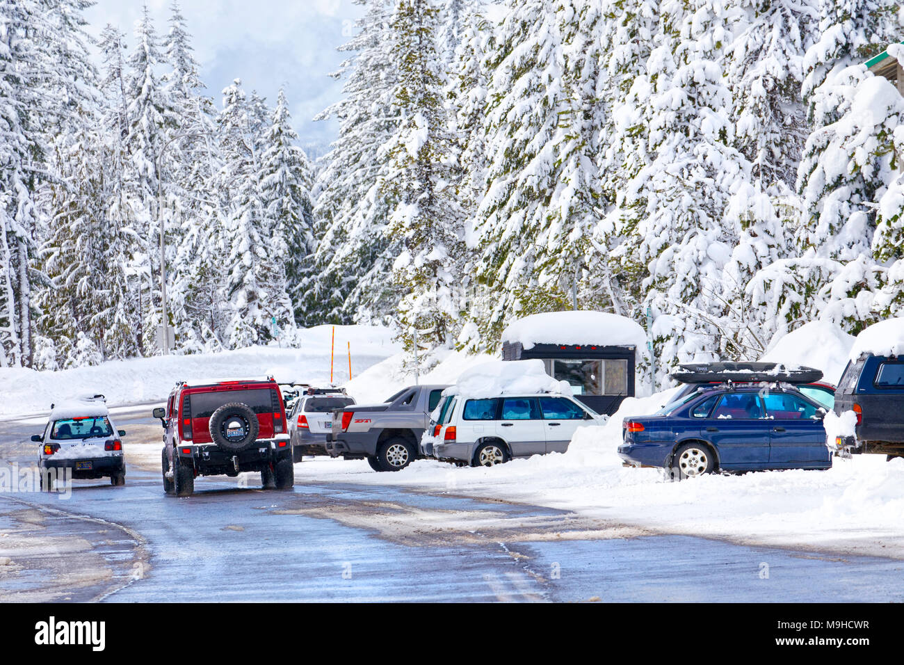 43,160.09728 winter snow-covered road, trees & driving & parked vehicle - Stock Image