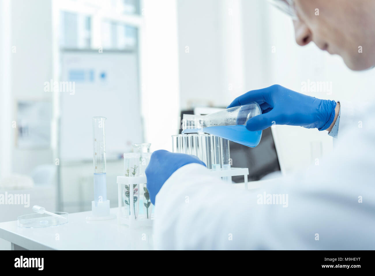 Concentrated scientist having an experiment - Stock Image