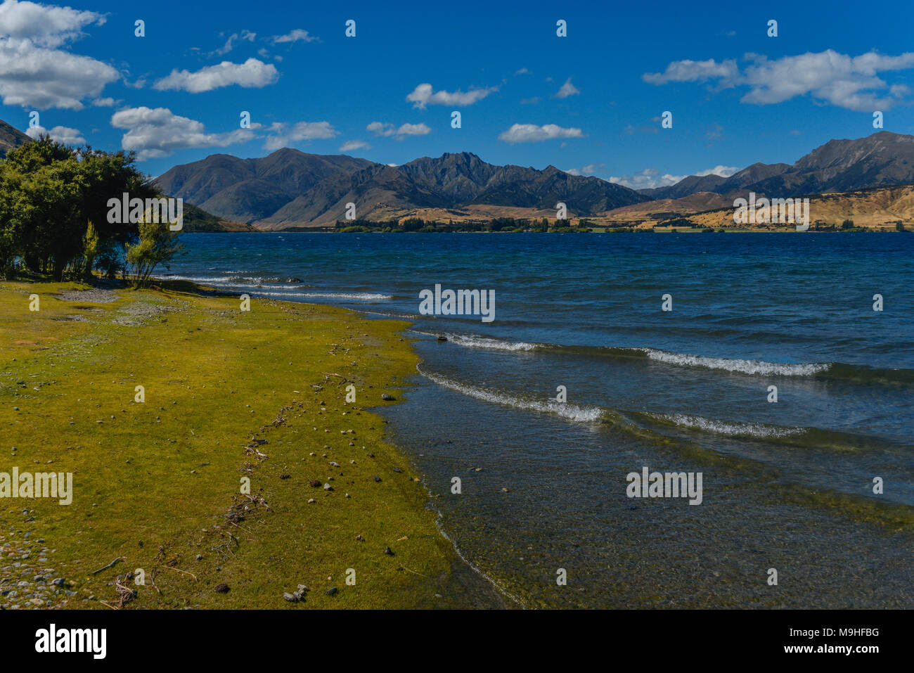 Lakeside view of Lake Wanaka in the South Island of New Zealand. Gentle waves lap the green shore line, with a range of hills in the background. - Stock Image
