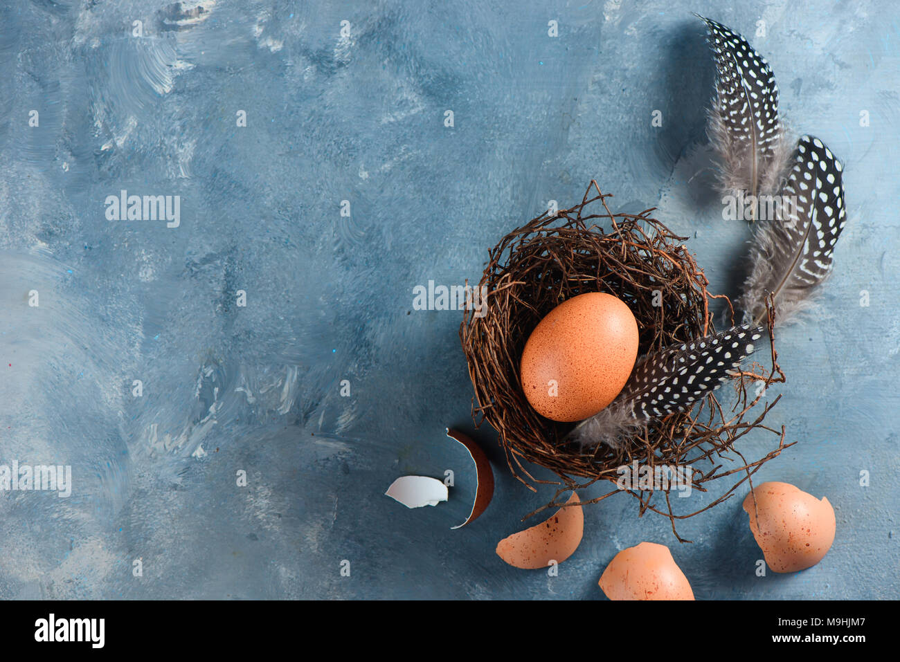 Fresh chicken eggs in nest. Minimalist cooking concept with copy space. - Stock Image