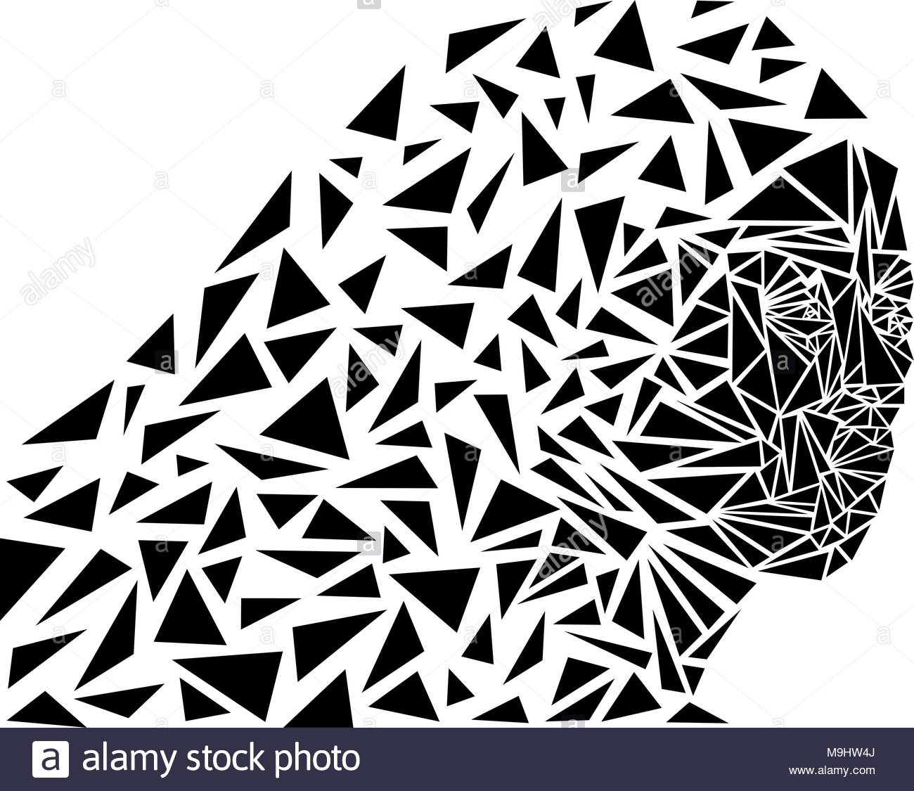 Geometric art, abstract vector illustration of a woman's face - Stock Image