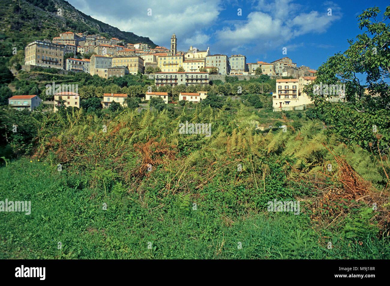 The picturesque mountain village Cervione, Corsica, France, Mediterranean sea, Europe - Stock Image