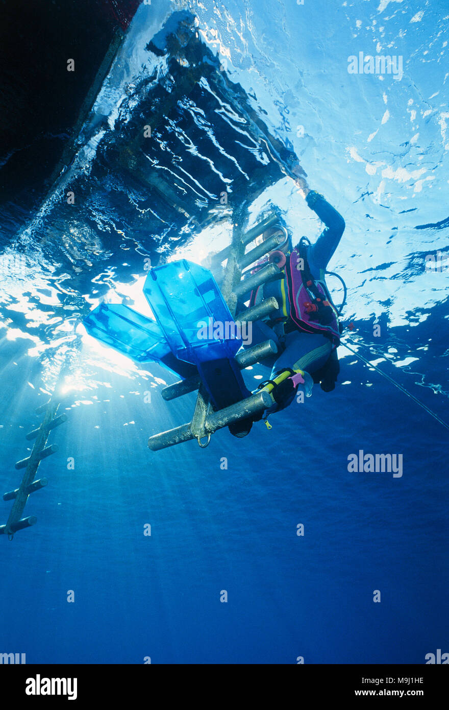 Taucher an der Bootsleiter vom Tauchschiff, Hurghada, Aegypten, Rotes Meer | Scuba diver at boat ledder of diving boat, Hurghada, Egypt, Red Sea - Stock Image