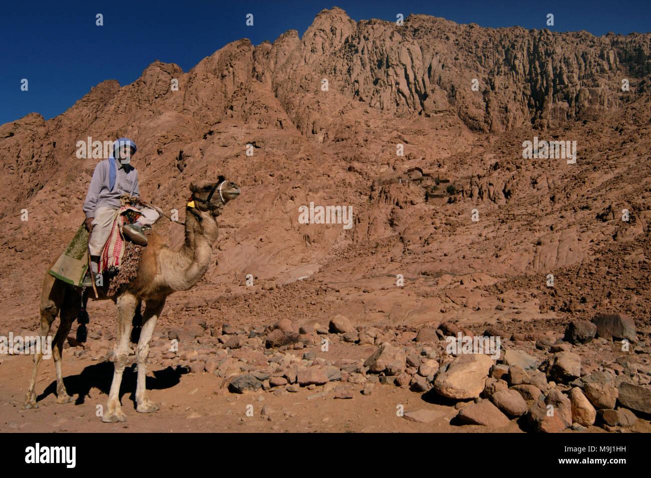 The Egyptian Sinai - Stock Image