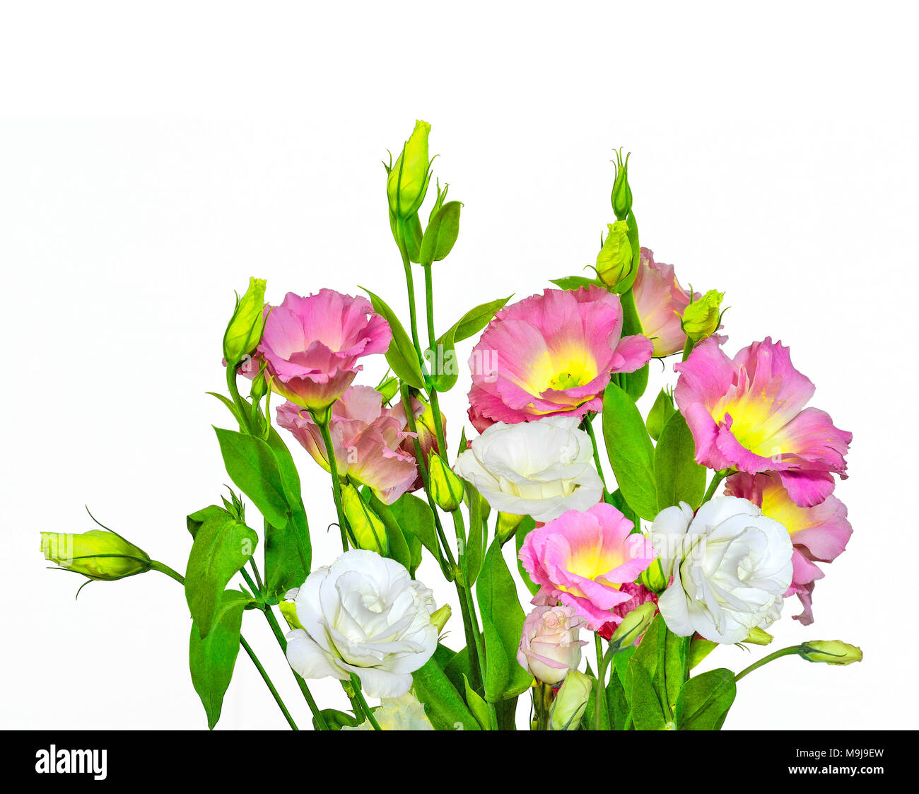 Bouquet Of Tender Pink With Yellow And White Eustoma Lisianthus