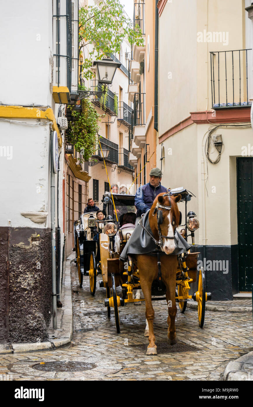 A horse drawn carriage is taking tourists on a tour through narrow cobbled streets in the Old Town of Seville, Andalusia, Spain - Stock Image