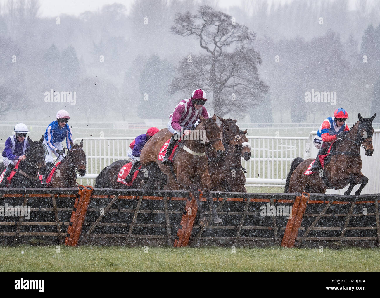 Uttoxeter Racecourse - Midlands Grand National Day 2018 Stock Photo