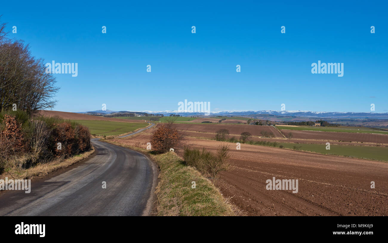 A curving minor road near Letham in Angus, wends its way towards a crossroads with a magnificent view of the snow capped Angus Glens beyond. Stock Photo