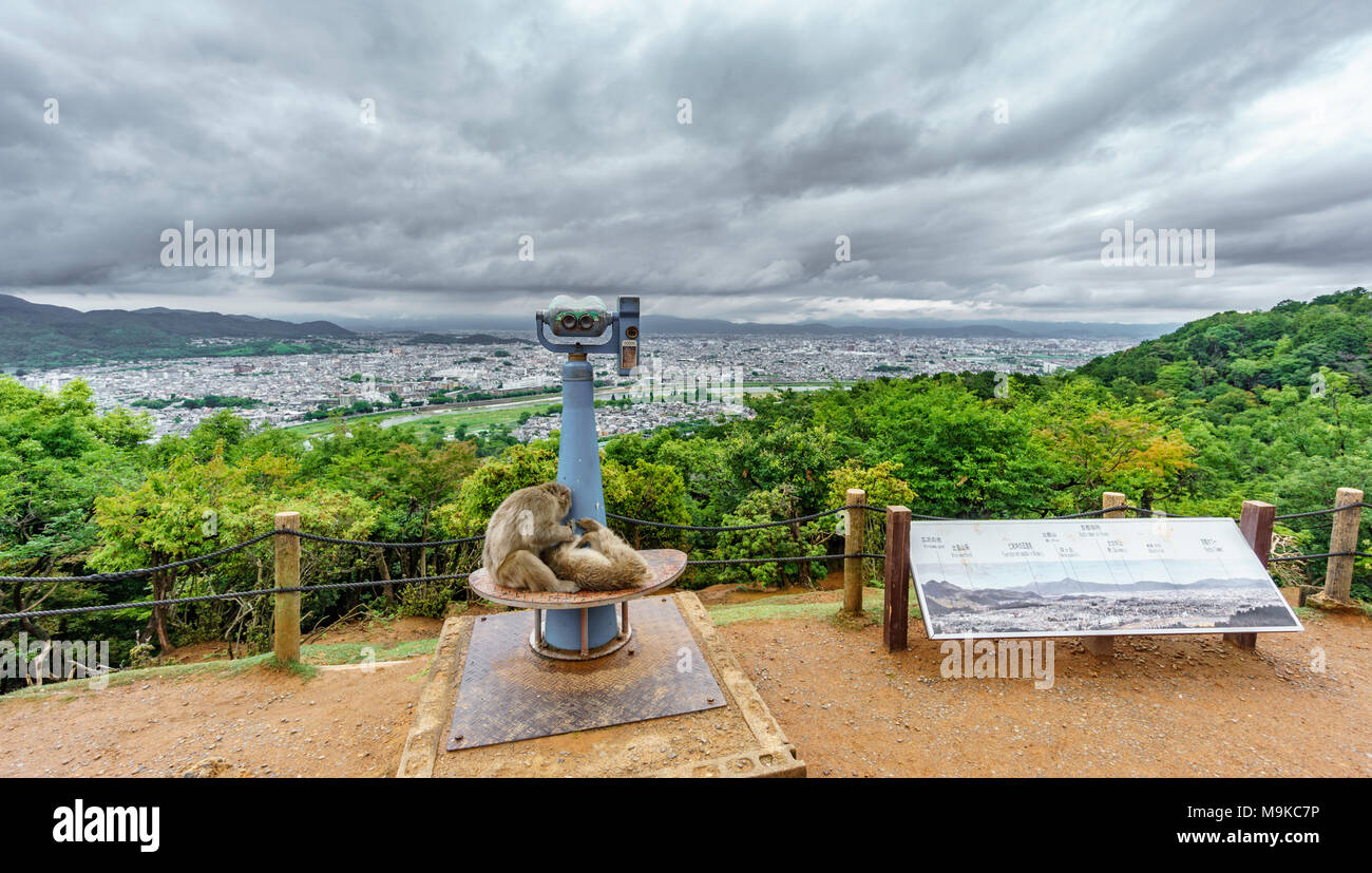 Kyoto from Arashiyama mountain with monkey in viewpoint Stock Photo