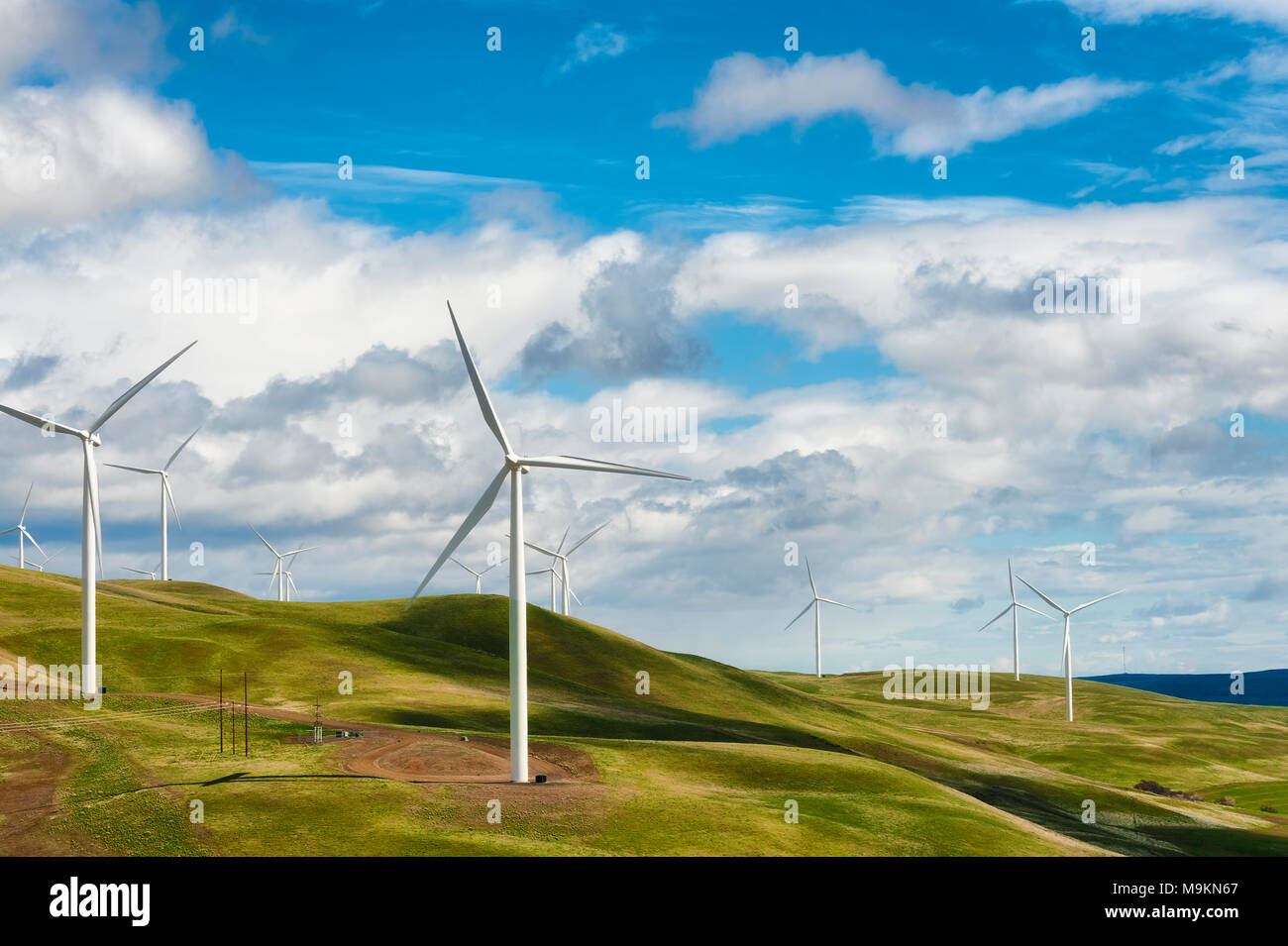 Wind Turbines stand tall and stark against the high desert landscape of rolling hills in the Columbia River Gorge - Stock Image