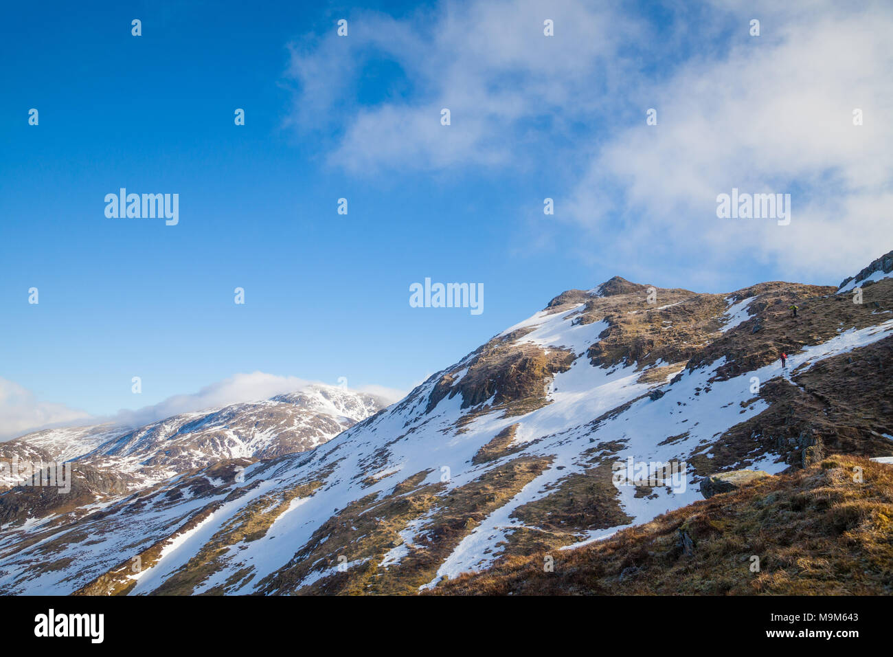 Looking up to the summit of Beinn Each withStuc a' Chroin behind, Trossachs Scotland. - Stock Image