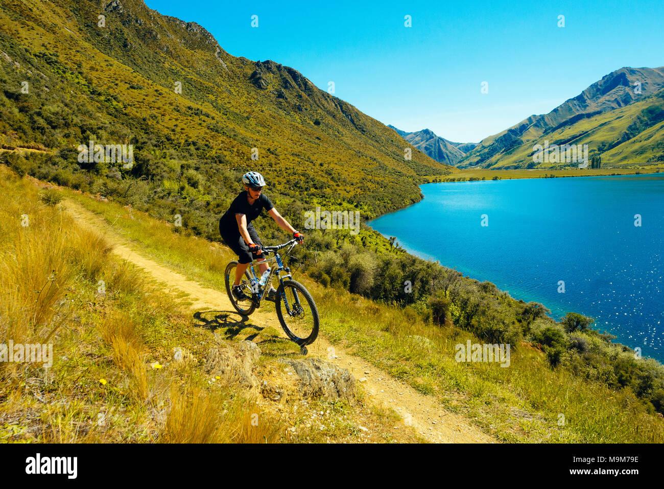 Mountain biker on the Moke Lake Trail near Queenstown, New Zealand - Stock Image