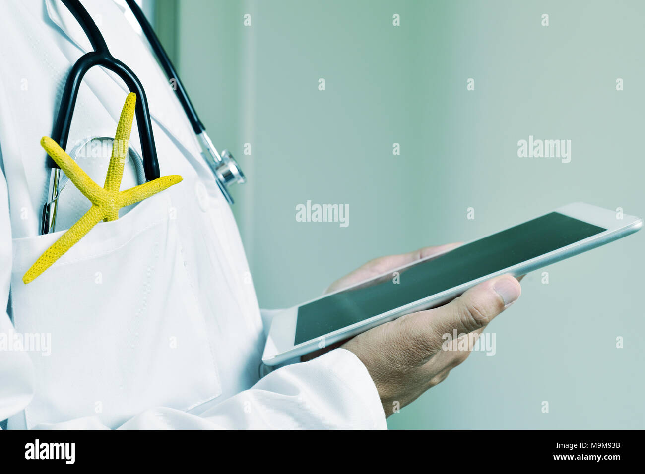 closeup of a young caucasian doctor man using a tablet with a colorful yellow starfish and a stethoscope in the pocket of his white coat, depicting th - Stock Image