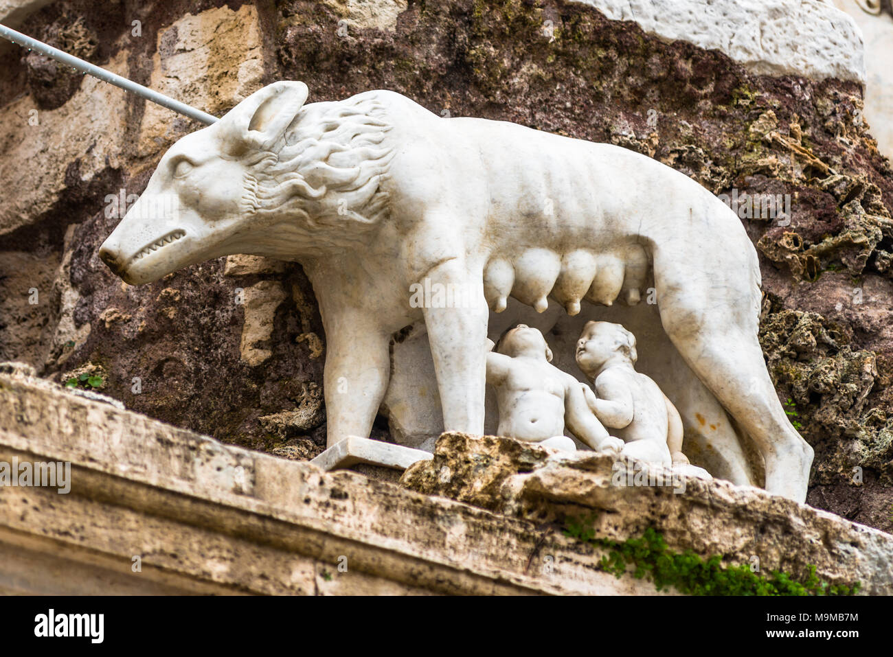 Statue of the She-Wolf Nursing Romulus and Remus in the Piazza del Popolo. Rome. Lazio. Italy. - Stock Image