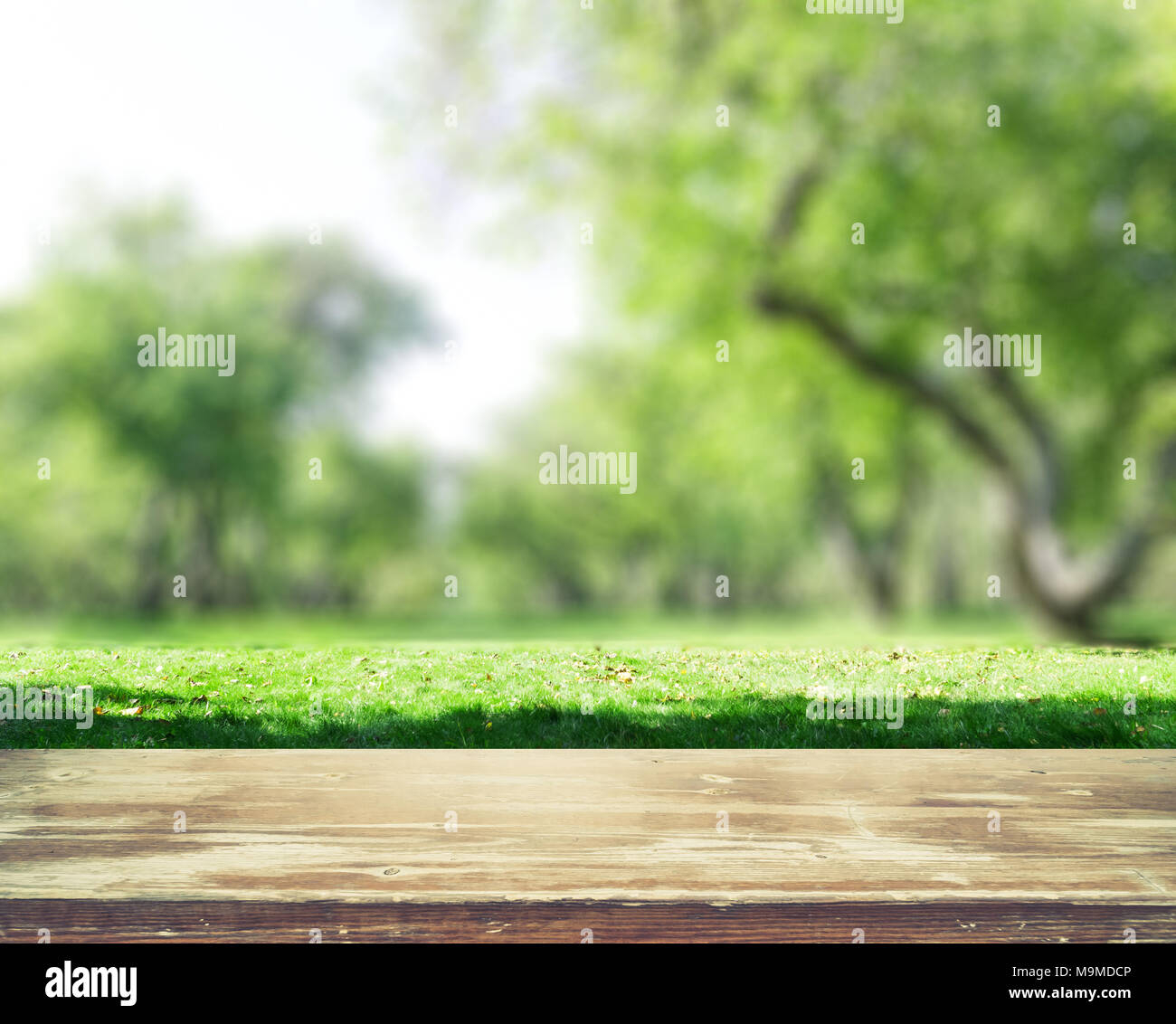 Blur Background High Resolution Stock Photography And Images Alamy
