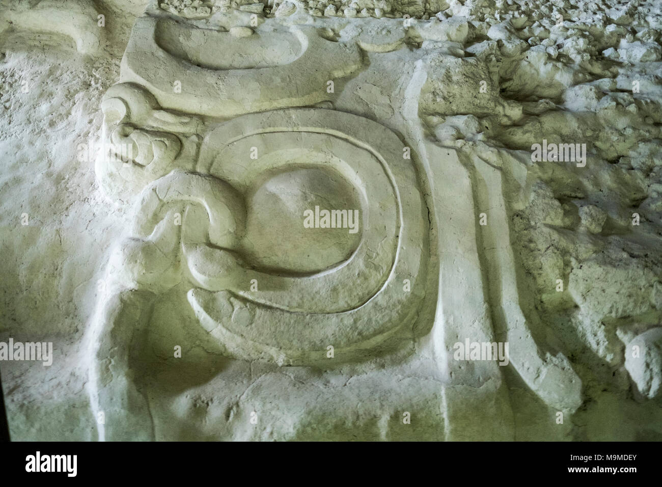 Ancient stone glyphs from the Mayan archeological site in Yaxha, Guatemala - Stock Image