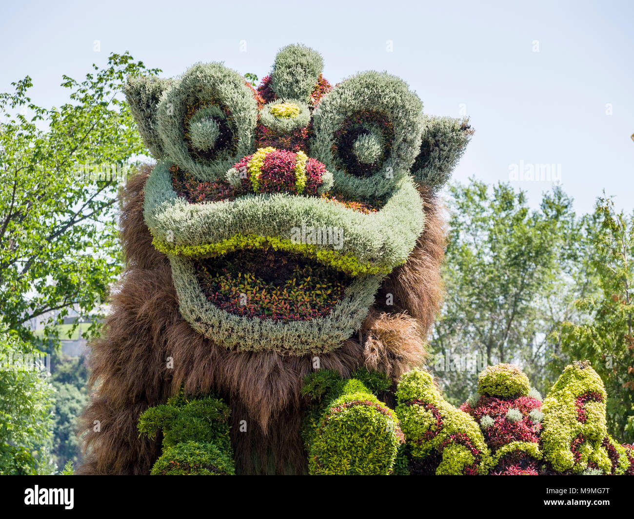 Chinese dragon plant sculpture: A huge plant-based sculpture of a chinese mythical dragon formed from a multitude of colourful plants at MosaiCanada 150. - Stock Image