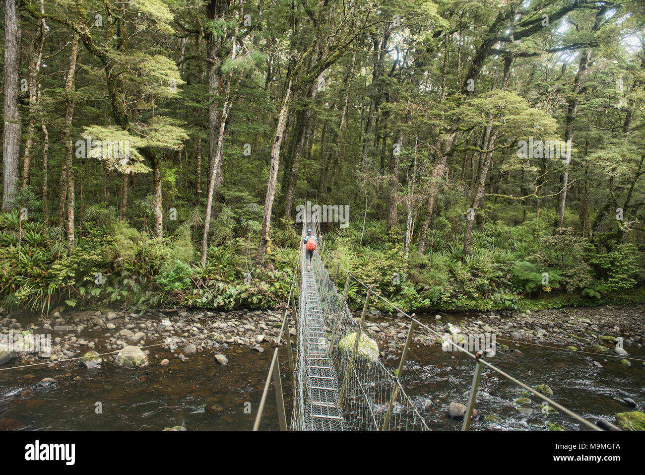 Catlins River Stock Photos & Catlins River Stock Images - Alamy