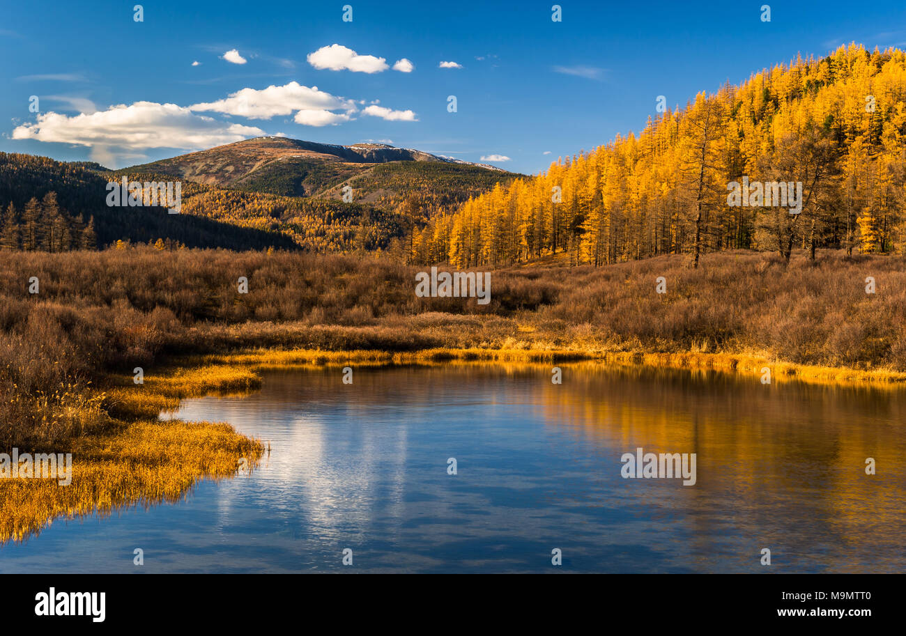 Tuul river with landscape in autumn colors and Burkhan Khaldun Mountain, Gorkhi-Terelj National Park, Mongolia - Stock Image