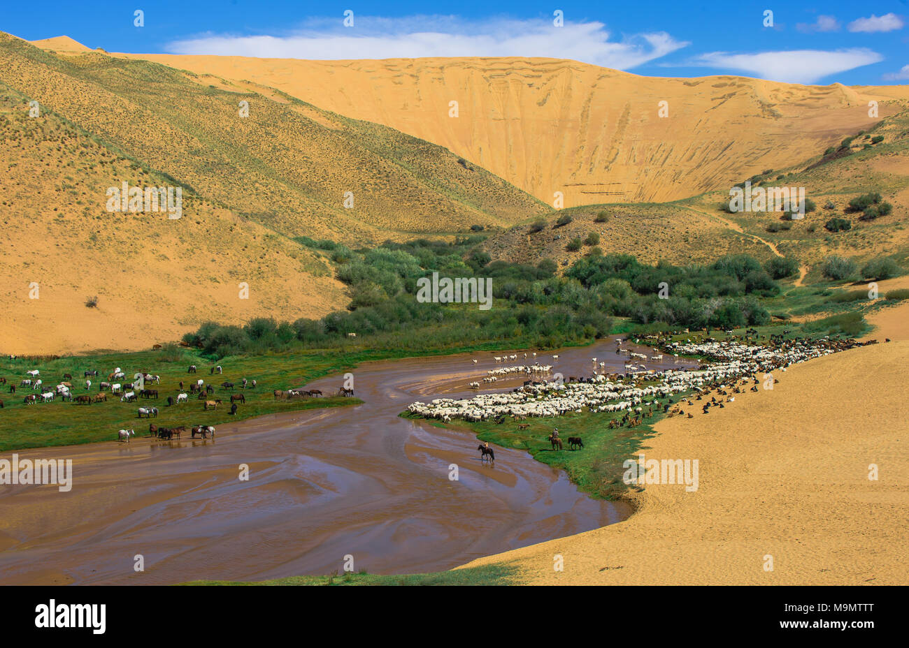 Baga-Nariin-Gol, Nariin River, Mongolia - Stock Image