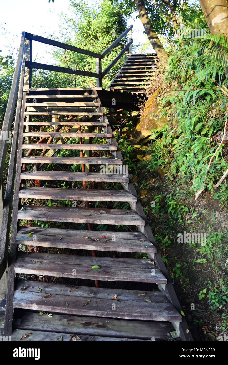 Steep Wooden Stairs - Hiking the Lantau Ngong Ping 360 Rescue Trail to the Big Tian Tan Buddha - Stock Image