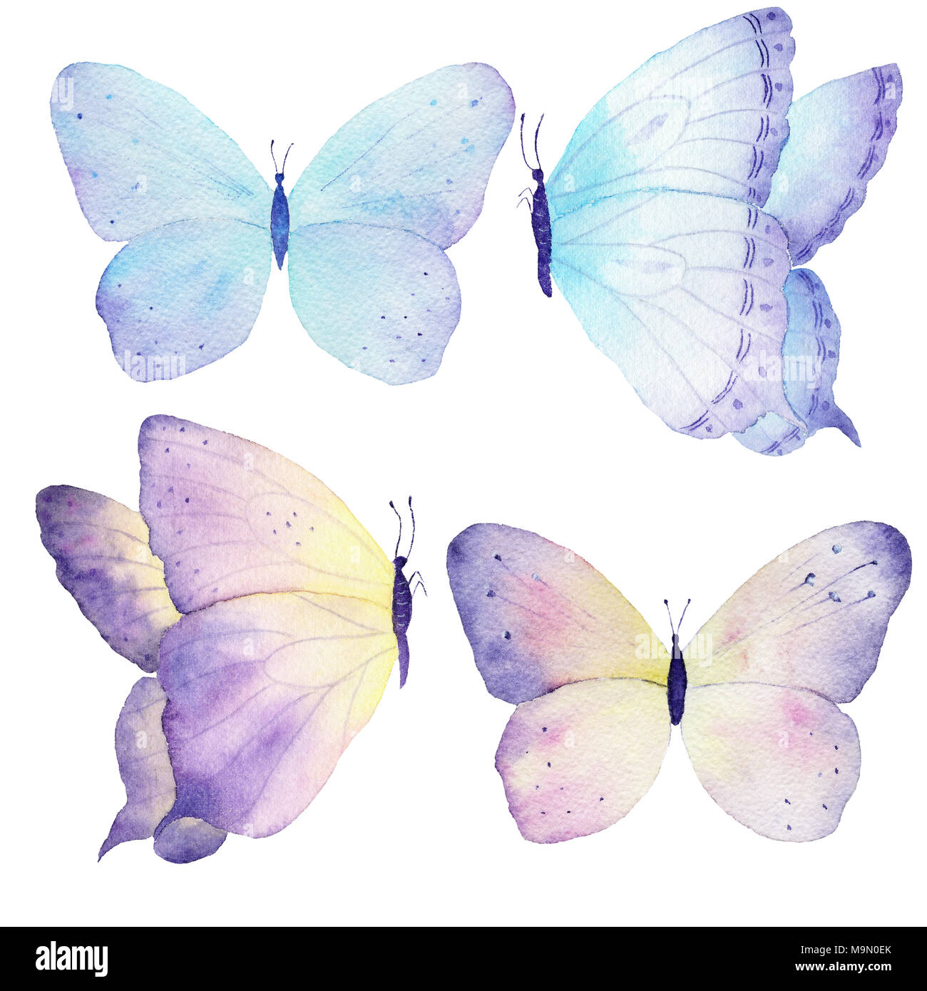 Watercolor butterfly set hand drawn painting. Can be used for ...