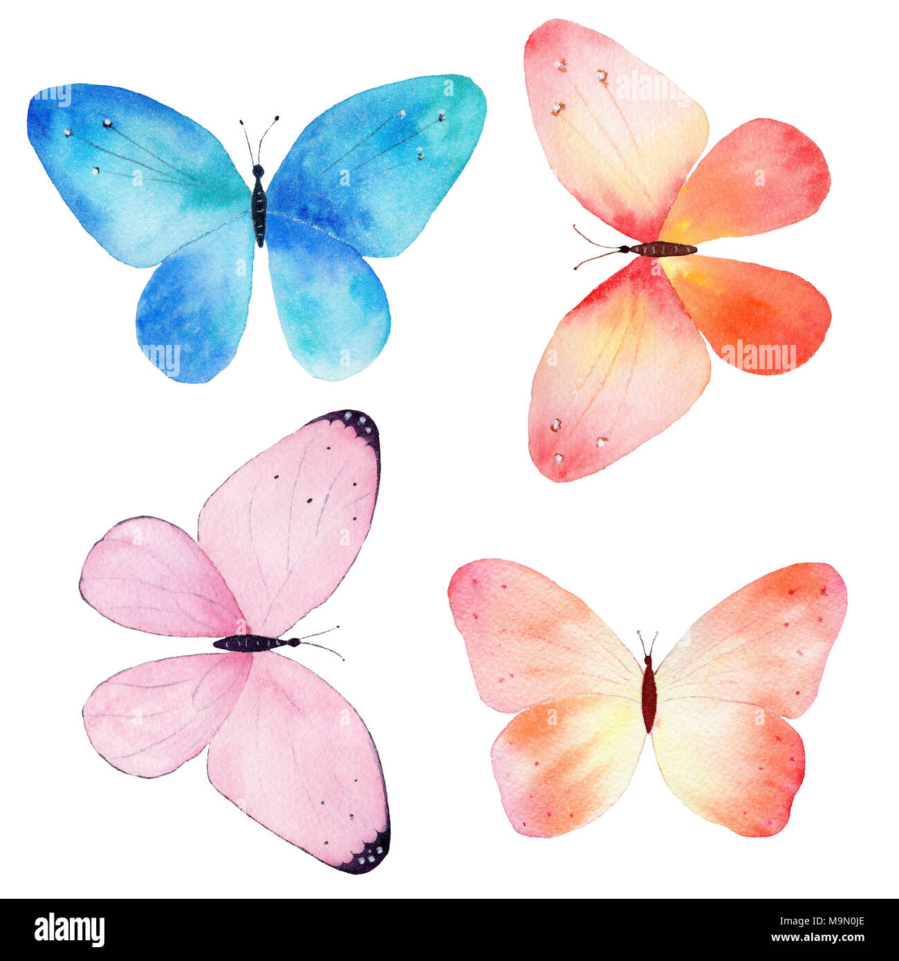 Watercolor hand painted collection of colorful butterflies isolated ...