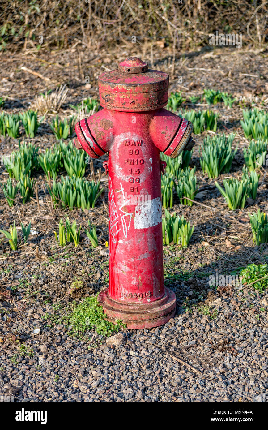 Red water hydrant in a park in Jena - Stock Image