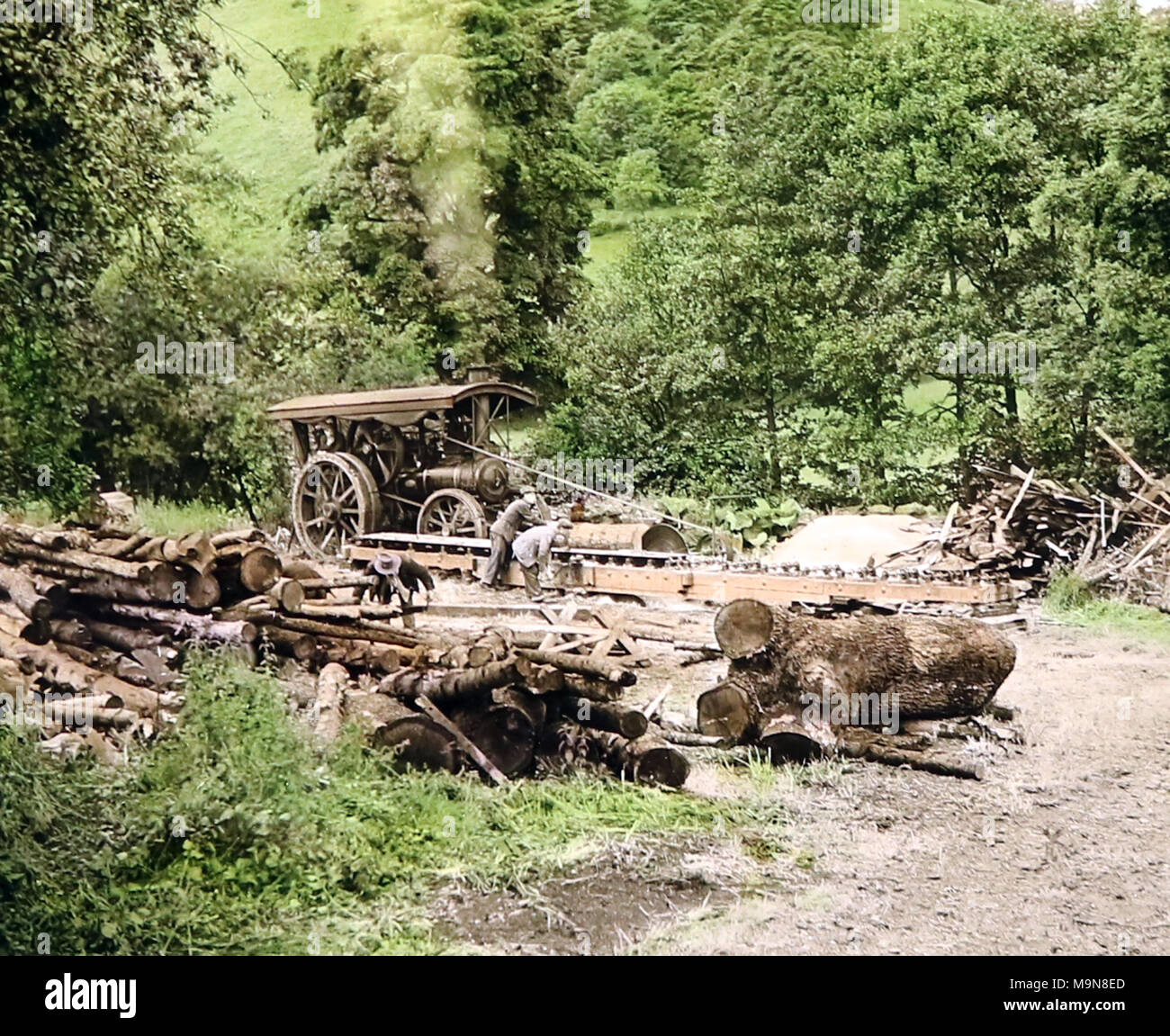 A sawmill powered by traction engine, early 1900s, hand coloured photo - Stock Image