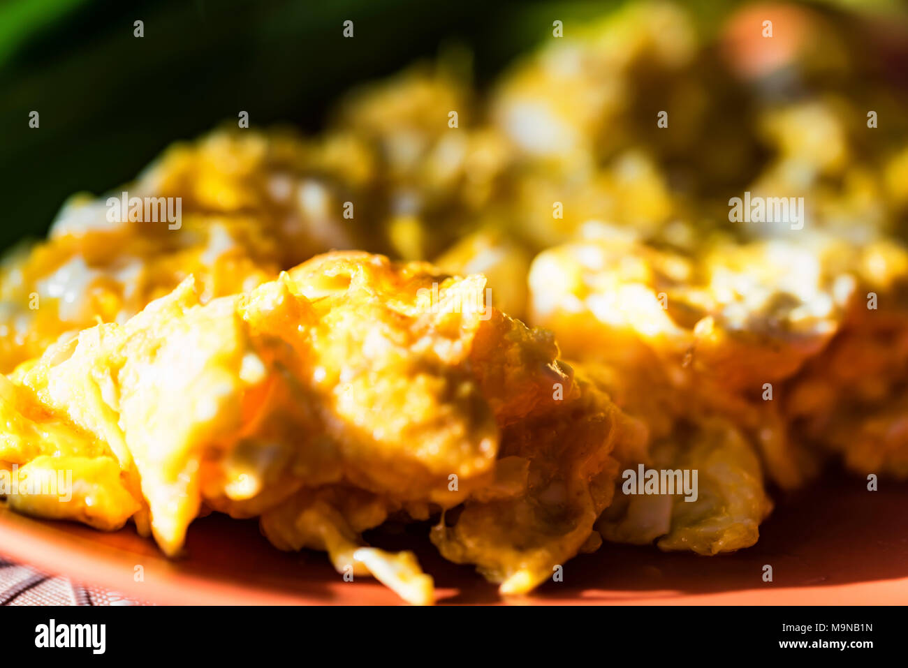 Scrambled eggs with green leek on plate close Stock Photo