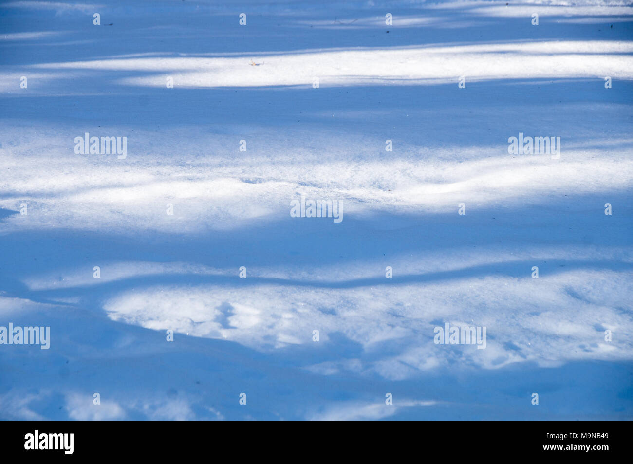 Snow on the ground - Stock Image