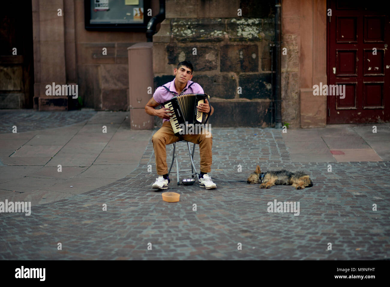 A street musician plays his accordion in Heidelberg, Germany while letting his sleeping dog lie. - Stock Image
