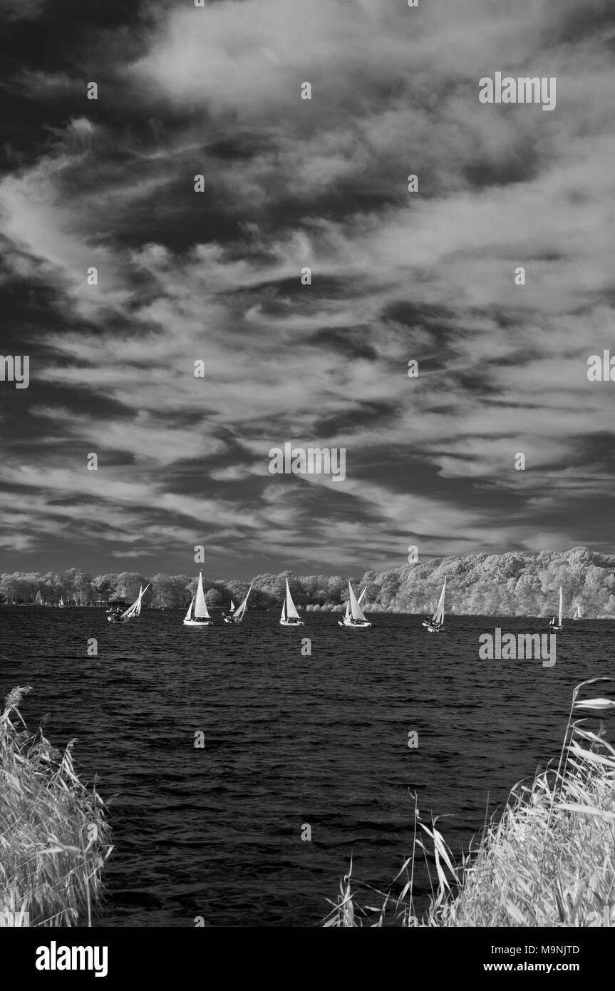 Infrared picture of Dinghies sailing on Frensham Great Pond, near Farnham in the Surrey Hills, with cloud formations overhead - Stock Image