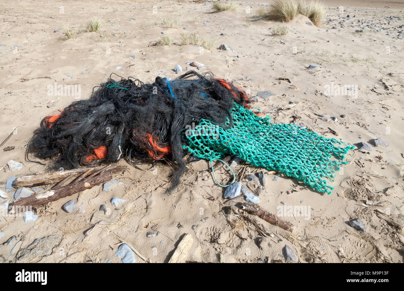 Marine debris - Stock Image